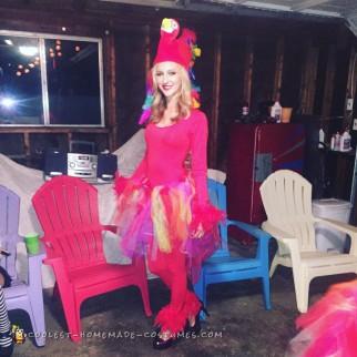 Perky Parrot Nation, Unique Parrots in Extravagant Costumes