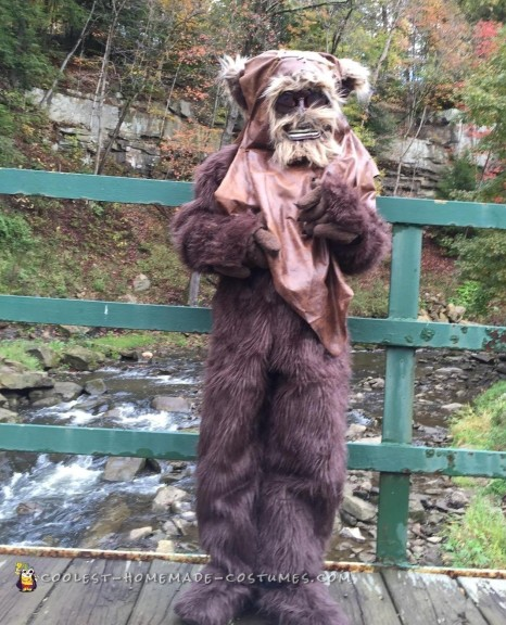 Homemade Star Wars Ewok Costume