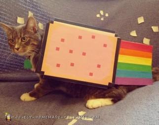 Super Simple Cat Costume - Nyan Cat!