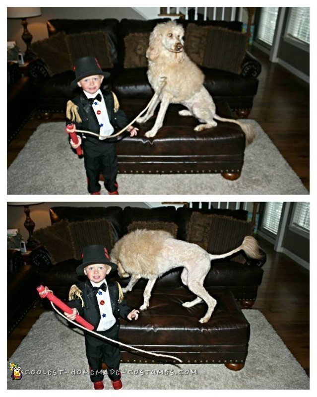 Cutest Toddler Lion Tamer Costume and Lion Dog - 1