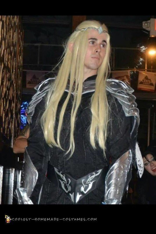 """Thranduil Costume from """"Battle of the Five Armies"""" Cosplay - 2"""