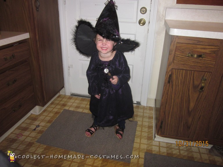 Toddler's Deluxe Handmade Spider Witch Costume