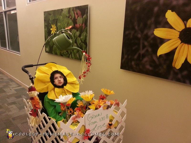 Wheelchair Flower Garden Costume