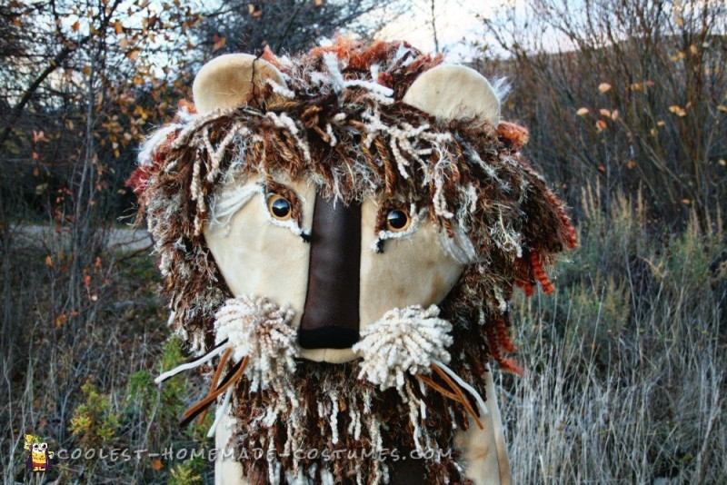 Autumn Yarn Homemade Lion Costume - 2