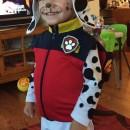 Cute DIY Paw Patrol Marshall Costume