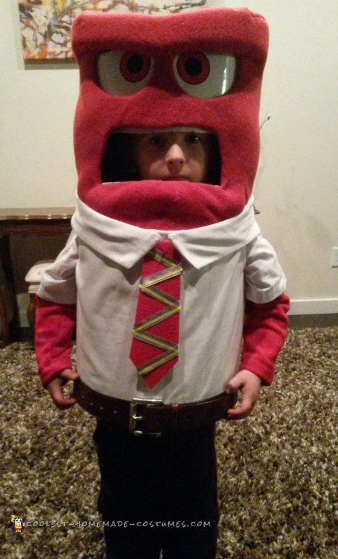 Coolest Inside Out Character Costume - Anger