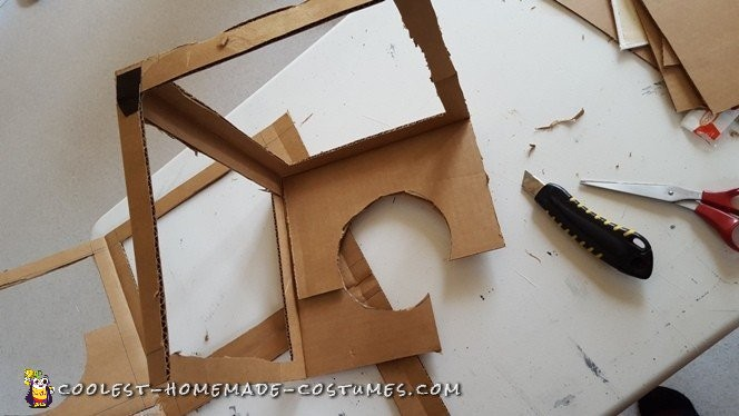 A cardboard box was used for the head cage