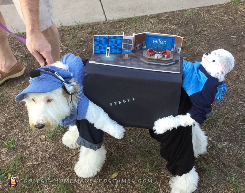Ellen Show Stage Dog Costume