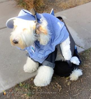 Ellen Show Stage Dog Costume