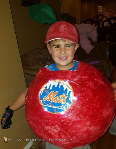 Cool NY METS Homerun Apple Costume