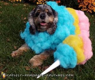 homemade halloween dog costume