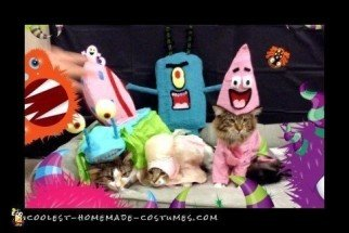 Cool Cat Group Costume