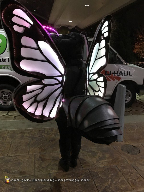 Amazing Butterfly Costume