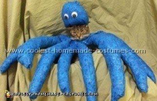 cat-halloween-costume-01.jpg