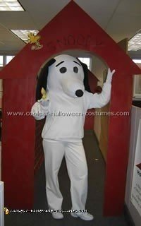 Charlie Brown Costume, Lucy and Snoopy