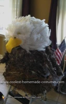 Homemade American Bald Eagle Costume
