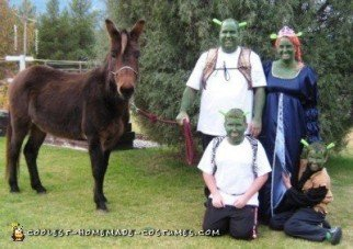 Homemade and Easiest Shrek Family Costume