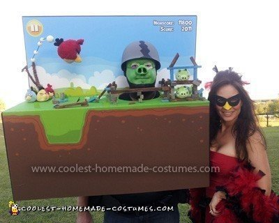 Homemade Angry Birds Couple Costume