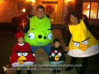Homemade Angry Birds Family Costume