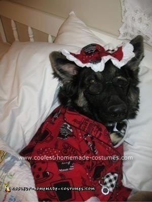 Big Bad Wolfie DIY Dog Costume