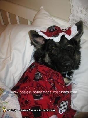 Coolest Big Bad Wolfie DIY Dog Costume