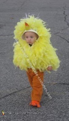 Homemade Big Bird Costume
