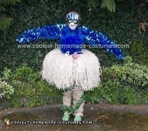 Homemade Bird in Nest Costume