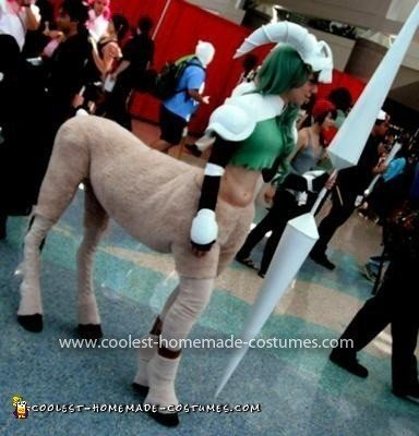 Homemade Centaur Costume