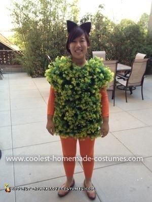 Homemade Chia Pet Costume