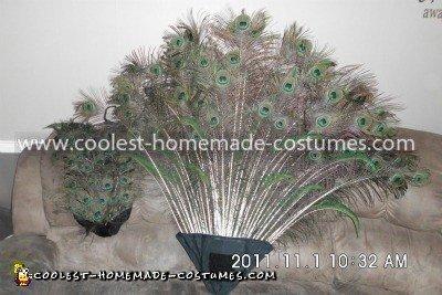 Homemade Child's Peacock Costume