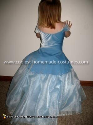 Homemade Cinderella and Prince Charming Couple Costume