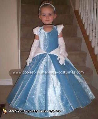 Homemade Cinderella Costume