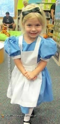 Homemade Do it Yourself Alice in Wonderland Costume