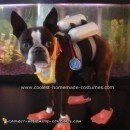 Echo the Scuba Diver Dog Costume