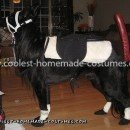 Homemade Dog Pony Costume
