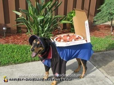 Domino's Deliver Dog Costume