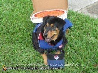 Homemade Dominos Deliver Dog Costume