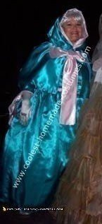 Homemade Fairy Godmother from Cinderella Costume