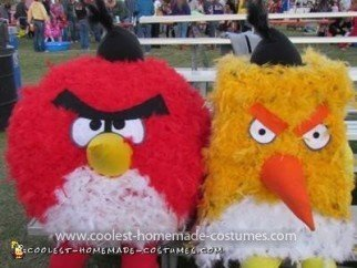 Homemade Feathered Angry Birds Couple Costumes