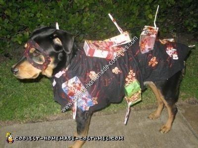 Handmade Cereal Killer Dog Costume Idea