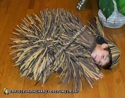 Home Made Porcupine Costume