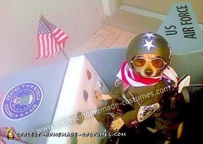 Coolest Homemade Air Force Fighter Pilot in Plane Dog Costume