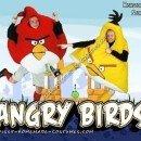 Homemade Angry Birds Costume