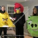 Homemade Angry Birds Halloween Group Costume