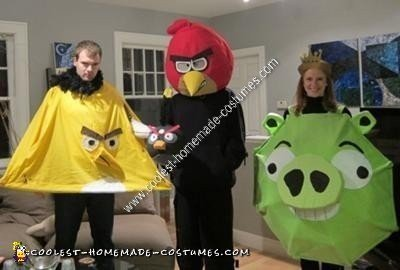 Homemade Angry Birds Halloween Group Costume