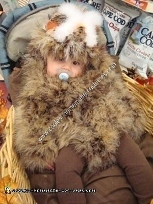 Homemade Baby Owl in a Nest Unique Halloween Costume Idea