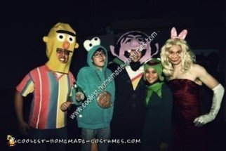 Homemade Bert Unique Halloween Costume Idea