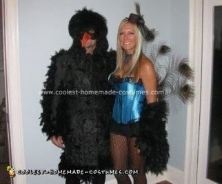 Homemade Black Bird and Peacock Couple Costume