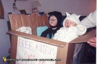 Homemade Box of Free Kittens Wheelchair Costume