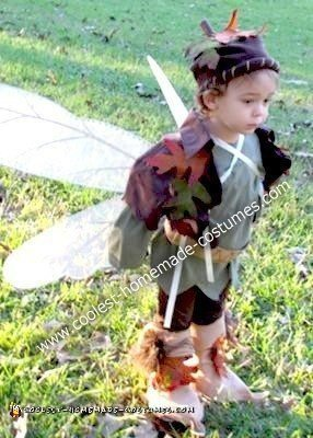 Homemade Boy Fairy Costume